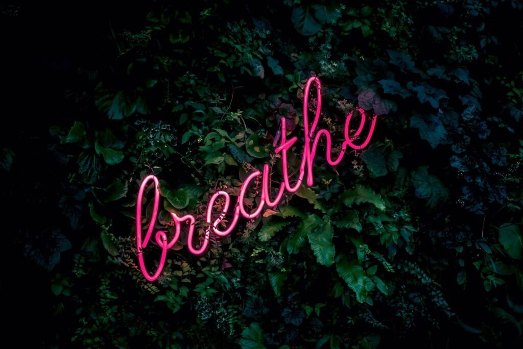 dark wall of greenery with hot pink cursive neon sign mounted on leaves reads breathe