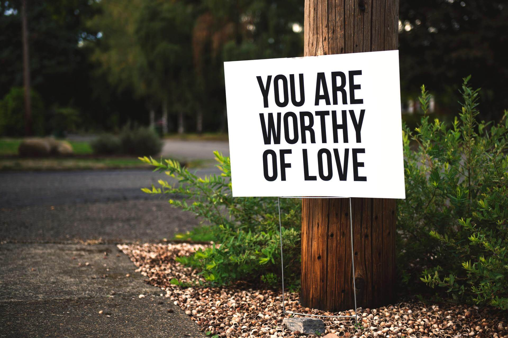 White yard picket sign in front of a large wooden telephone pole reads you are worthy of love