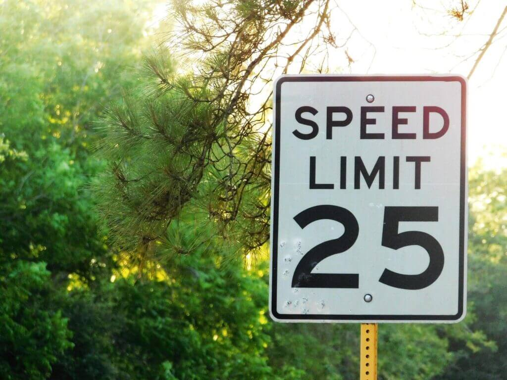 Pine tree branches in background black and white 25mph speed limit sign in right foreground of image