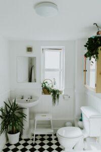 White bathroom with white and black tile green plants white ceramic pedestal sink white toilet