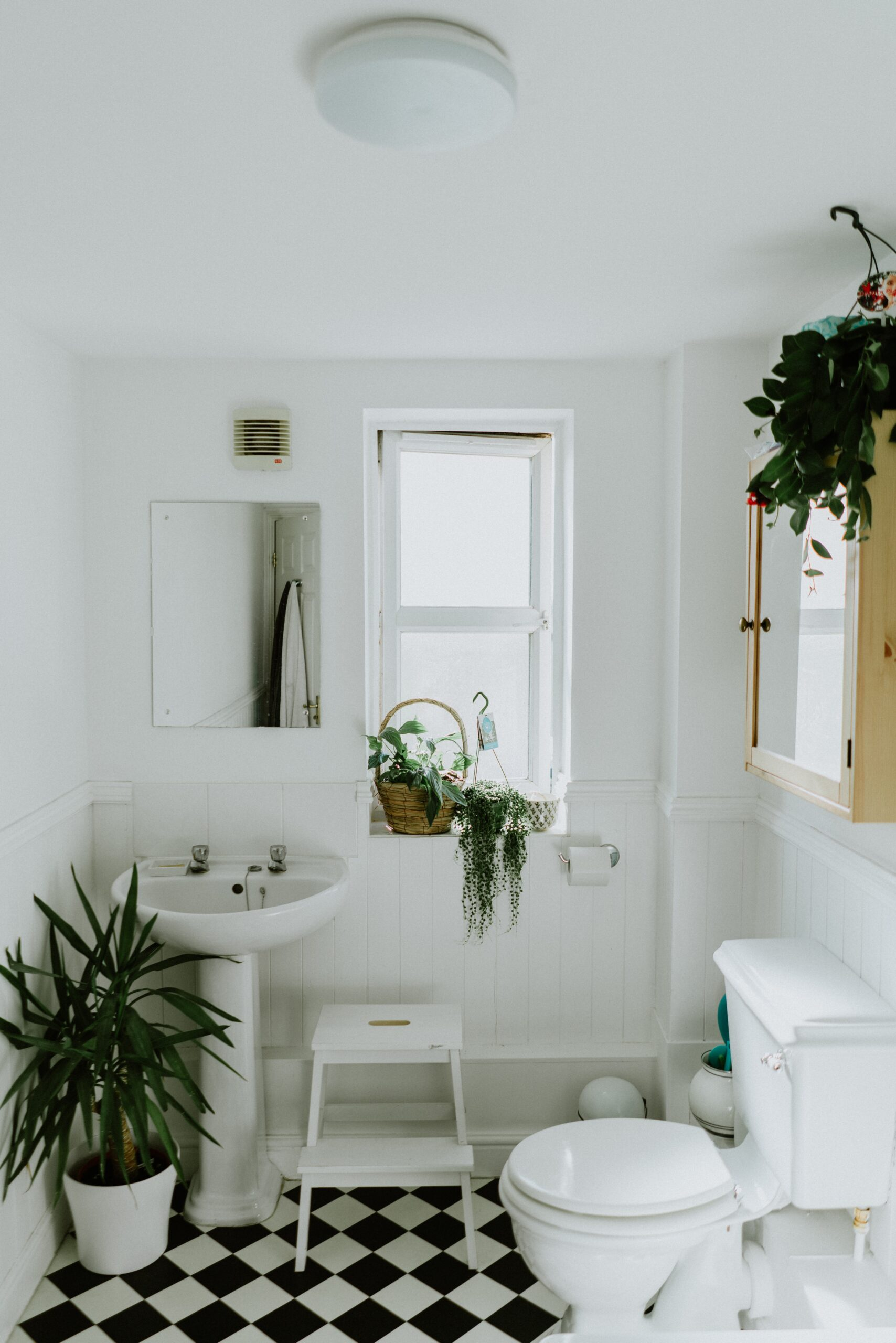 White bathroom with white and black tile green plants white ceramic pedestal sink white toilet
