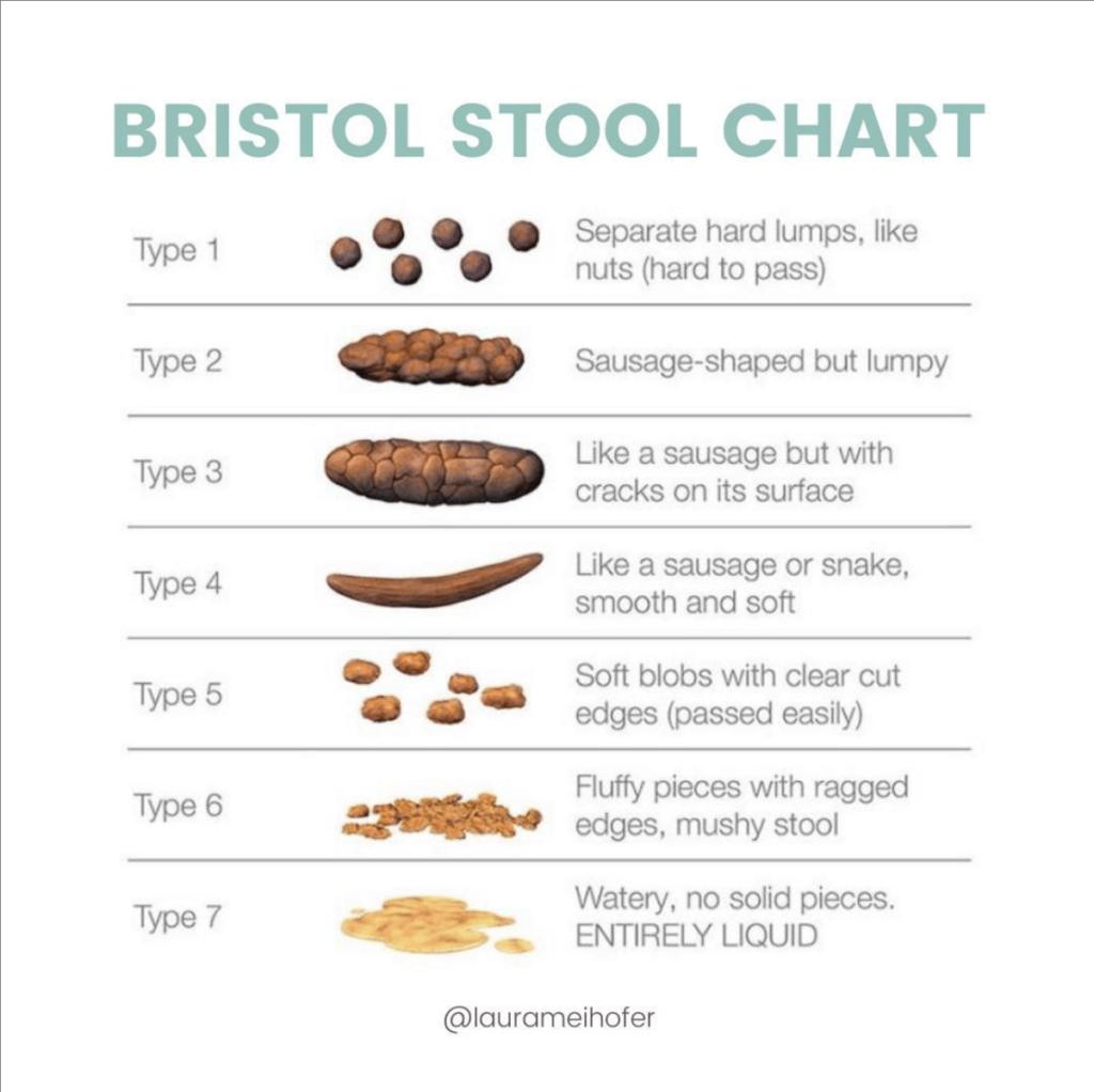 Bristol Stool Chart for identifying signs of bowel evacuation disorder